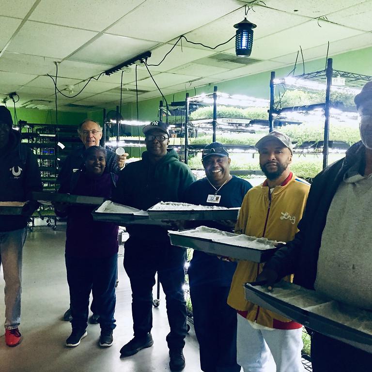 VA Workshop 2019: Microgreen Production Part 1