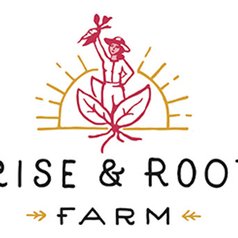 Gleaning Workshop w. Cornell Small Farms & Rise and Root Farm [Part 1: Planting Cabbage]