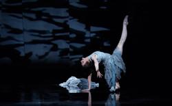 M-Dao - ballet
