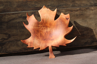 Big Leaf Maple Leaf