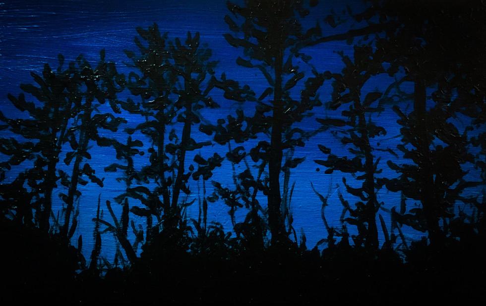 Landscape at Night Study