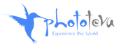 לוגו חדש כחול PNG.png