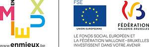 logo_FSE_FWB_Impecc.jpg