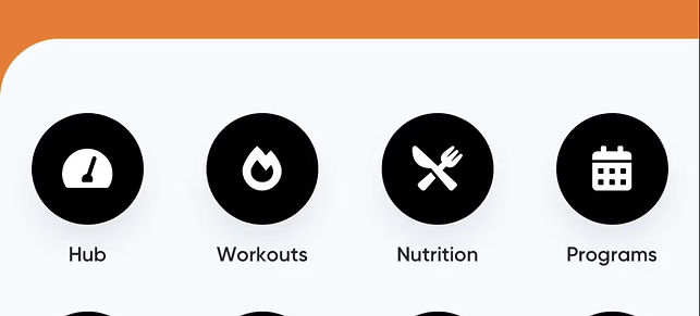 Overview of What The Fitness App Looks Like