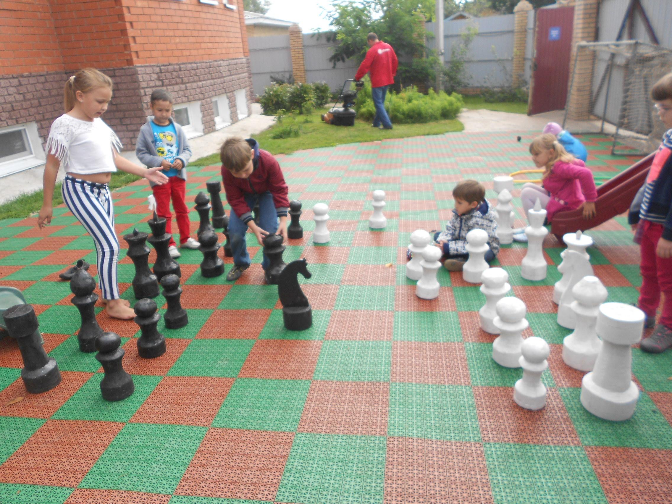 Шахматы в Михайловке