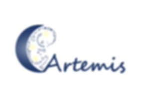 artemisLR.jpg