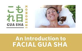 Copy of  Gua sha Essentials (2).png