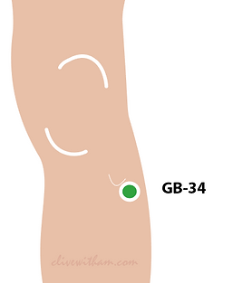 Gall Bladder 34 Stress Clive Witham