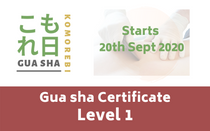 Gua sha online Certificate level 1 course