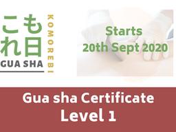 Gua sha online Certificate level 1 course