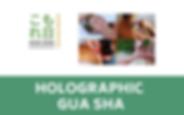 Holographic Gua sha.png