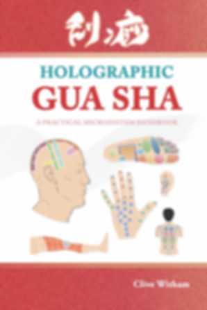 GUA SHA FRONT COVER XX1 Test 3.jpg