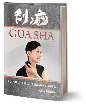 Gua Sha Guide book Clive Witham.png