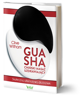 Polish book.png