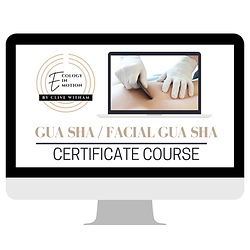 Gua sha certificate course Clive Witham.