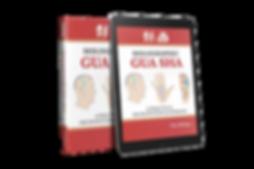 Holographic Gua sha: A Practical Microsystem Handbook