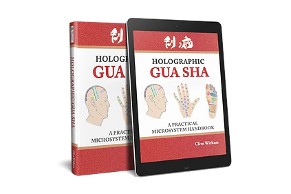 Holographic Gua sha: A Practical Microsystem Handbook
