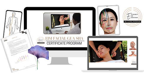 EIM Facial Gua sha Certificate Program.png