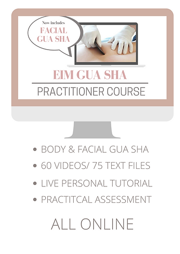 EIM GUA SHA PRACTITIONERS COURSE.png