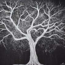 L'arbre du coeur