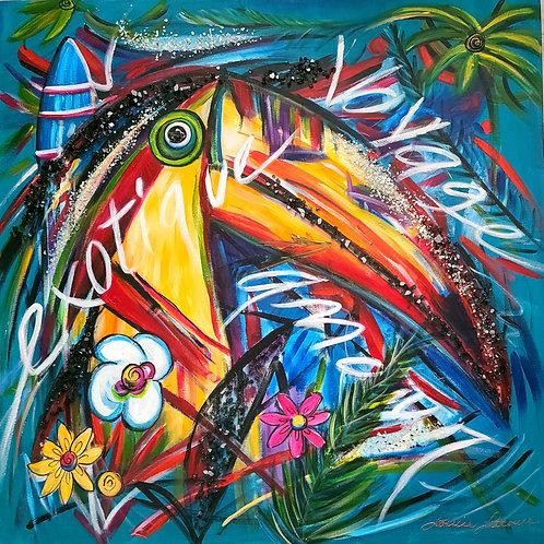 Le toucan des Caraibes 36x36