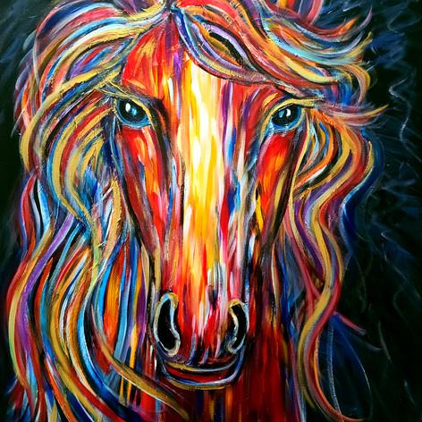 36x30 Le cheval coloré