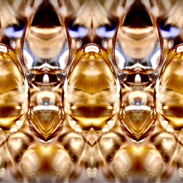 *Golden* Michelle Aubert Photo.jpg