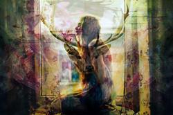 Distinct Soul