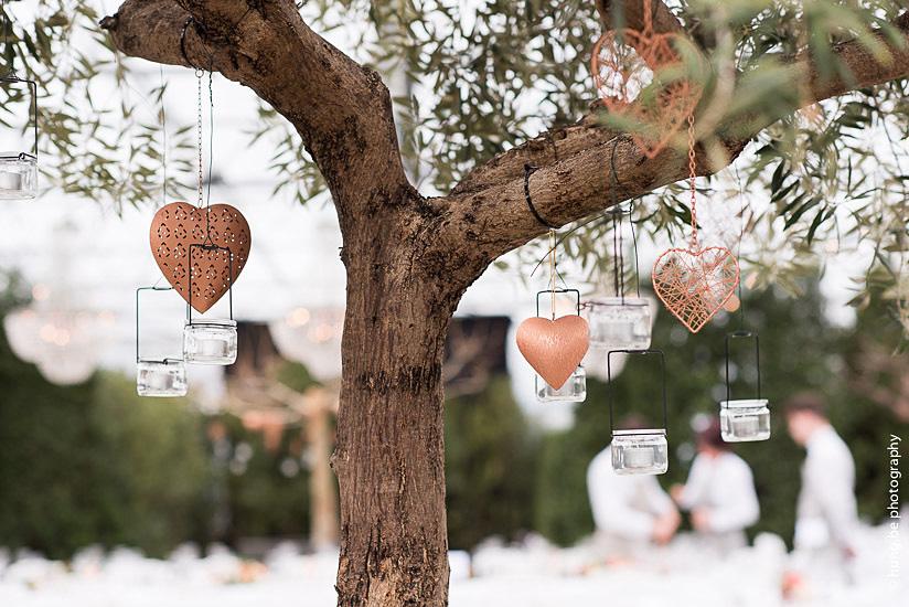 Tree of love _ Serre Jef Cools