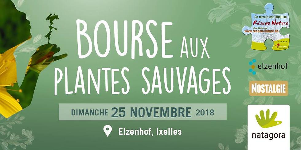 Swing That Bird @Bourses aux Plantes Sauvages