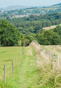 Walking trails Strines area