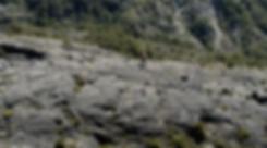 Screenshot 2020-04-02 at 02.13.11.png