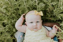 Cannon Family - Burlington Sunflower Fie