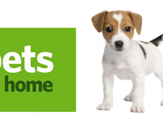 Pets at Home looking top dog on experiential retail