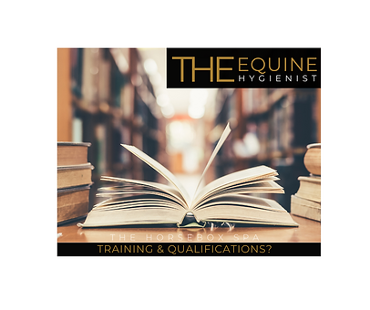 Q&A qual & training (2).png