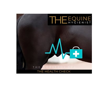 health check (2).png