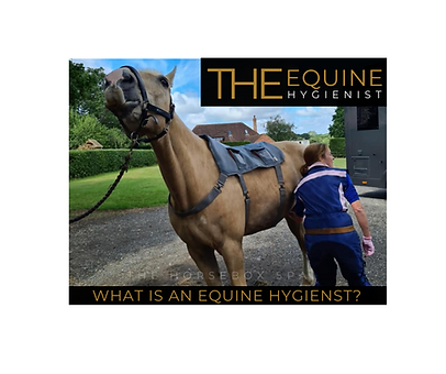 Q&A what is an equine hygienist.png