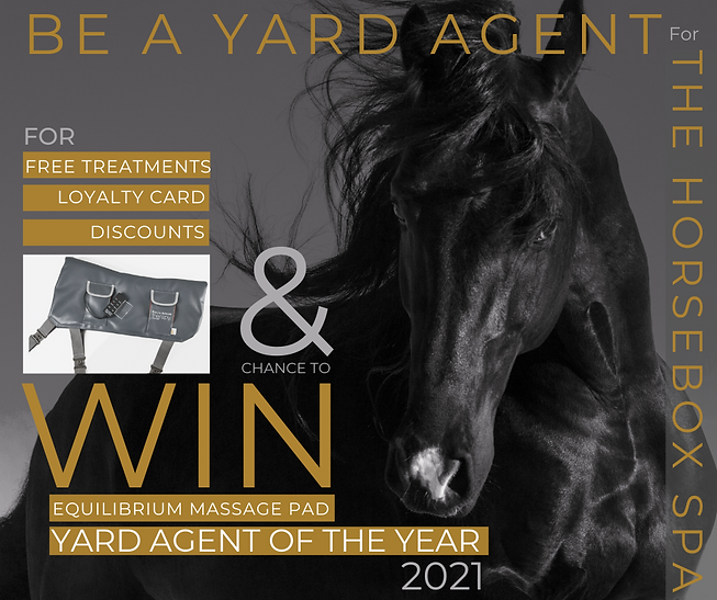 Yard Agent Ad 2 (4).png