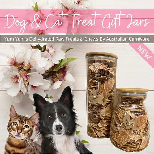 Dog & Cat Treats Gift Jars