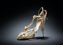 Vanity Shoes, Pied de poule, 2017