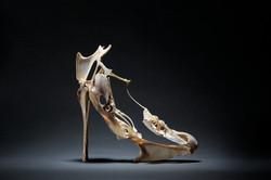 Vanity Shoes, la Coquine
