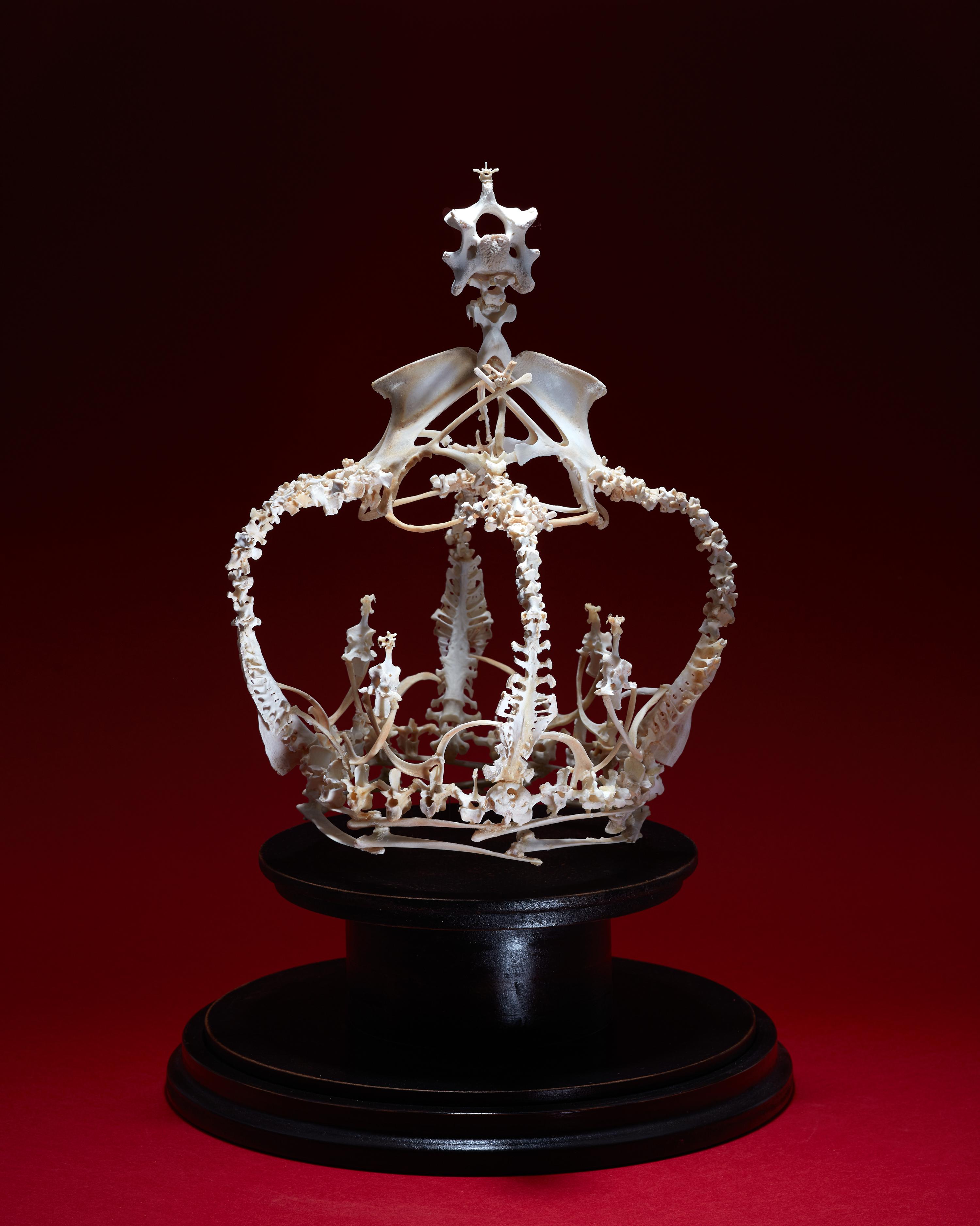 La couronne mère ,2020