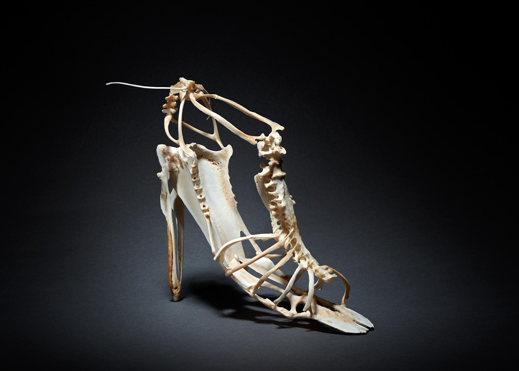 Vanity shoes- Le salomé