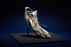 Vanity Shoes,2019