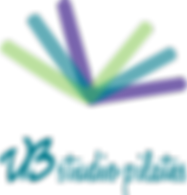 Logo_VB.png