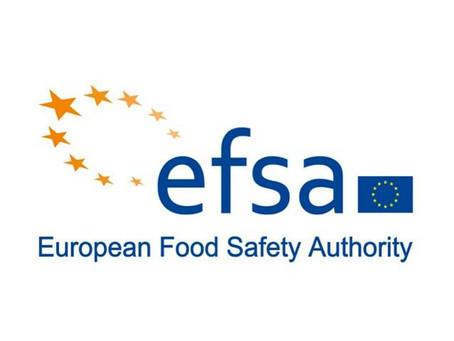 Esce la prima valutazione EFSA sugli insetti commestibili