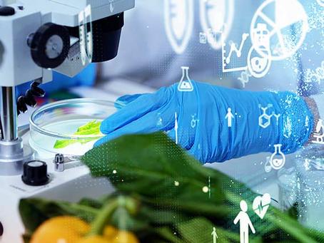 Superare le barriere psicologiche per utilizzare proteine alternative e sostenibili