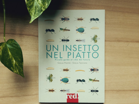 #INSECTSBOOK