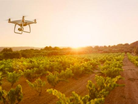 Aziende agricole vincitrici della seconda edizione del Premio per l'innovazione di Confagricolt