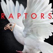 """Raptors"""